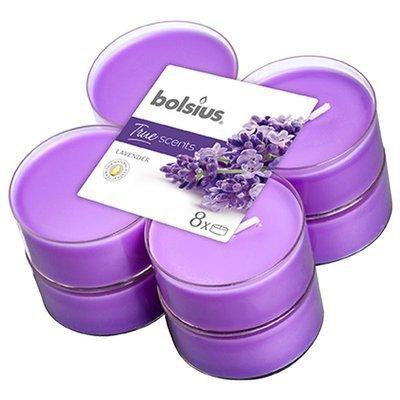 Bolsius scented maxi tealights 6 cm 8 pcs True Scents purple - Lavender