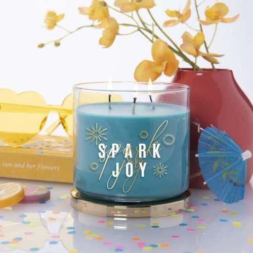 Colonial Candle Inspire sojowa świeca zapachowa w szkle Podziękowanie 3 knoty 14.5 oz 411 g - Spark Joy