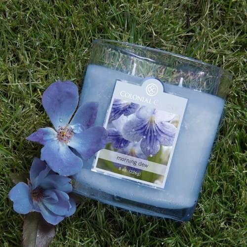 Colonial Candle średnia świeca zapachowa w owalnym szkle 8 oz 226 g - Morning Dew